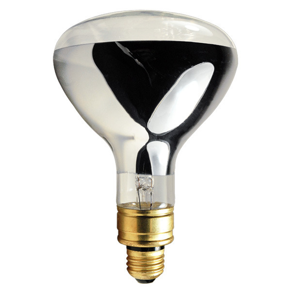 Heating Light Bulb : Sylvania watt r ir heat lamp