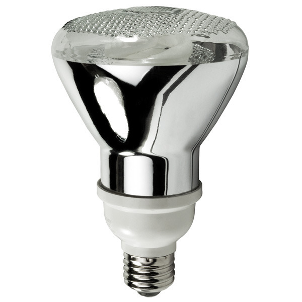 PAR30 CFL - 16 Watt - 75 Watt Equal - 2700 Kelvin - Warm White Image