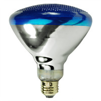 100 Watt - Blue - BR38 - Flood - Weatherproof - 120 Volt - 2,000 Life Hours