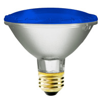 75 Watt - PAR30 - Blue - Halogen - 2,500 Life Hours - 120 Volt