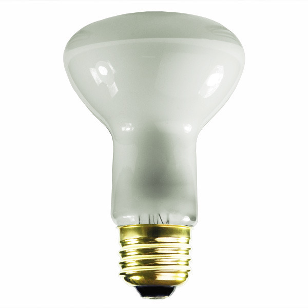 45 Watt - R20 - Incandescent Reflector Image