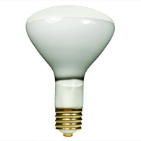 500 Watt - BR40 - Incandescent Reflector - Frosted - Flood - Mogul Base - 6,500 Lumens - 2,000 Life Hours - 120 Volt