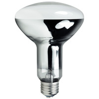 EYE 70701 - 100 Watt - R30 - Mercury Vapor - 2900 Lumens - 5700K - Medium Base - ANSI H38 - HR100W/R30