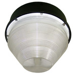100 Watt - Metal Halide Canopy Light Image