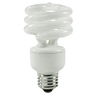 Energy Miser FE-IISB-19W/65K - 19 Watt - CFL