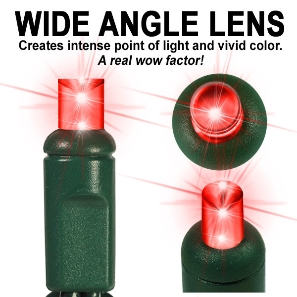 12 ft. Stringer - (30) Wide Angle LED's - COLOR CHANGING - WARM WHITE, RED, GREEN Image