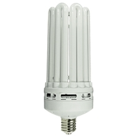 5U CFL - 100 Watt - 250W Equal - 2700K Warm White - Mogul Base