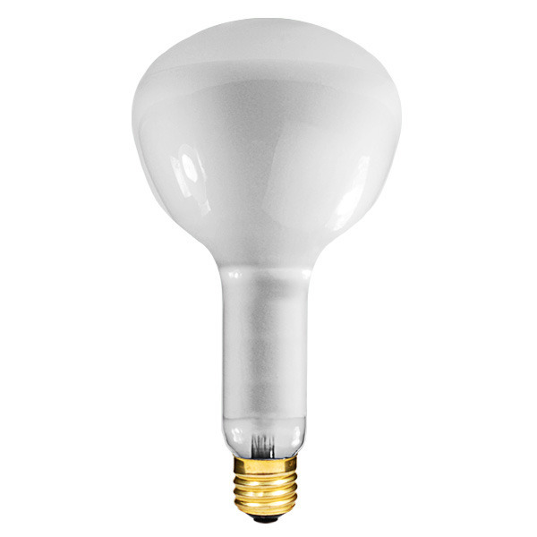 500 Watt - R52 - Incandescent Reflector Image