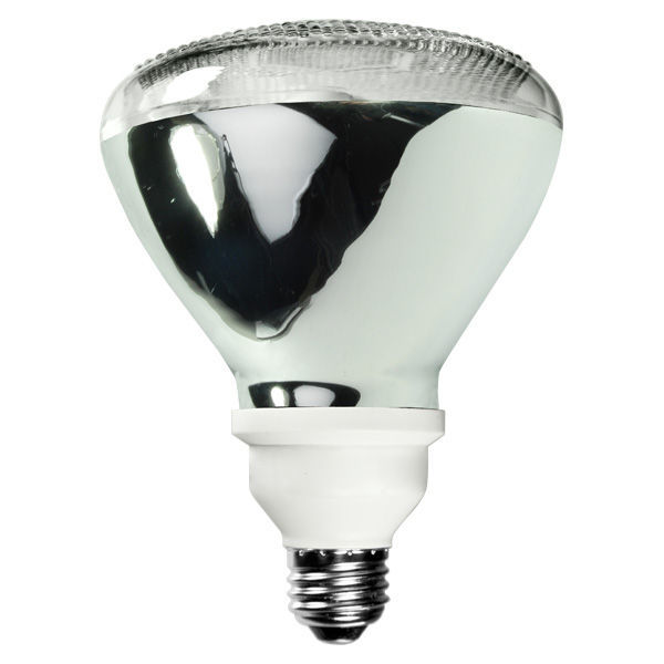R38 CFL - 20 Watt - 65W Equal - 5000K Full Spectrum Image