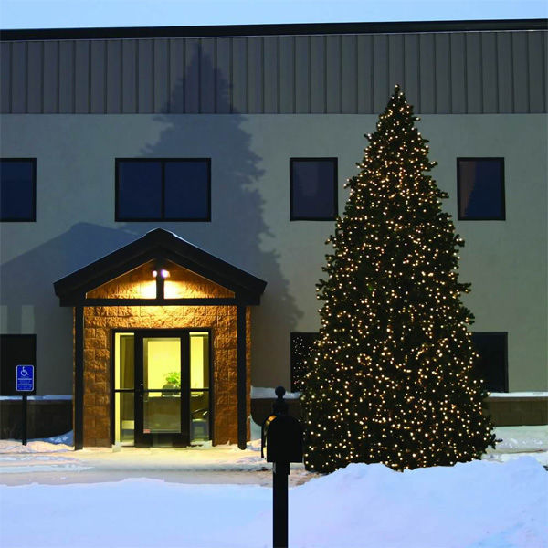 20 ft. Artificial Christmas Tree Image