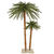 6 ft. Christmas Palm Tree Set