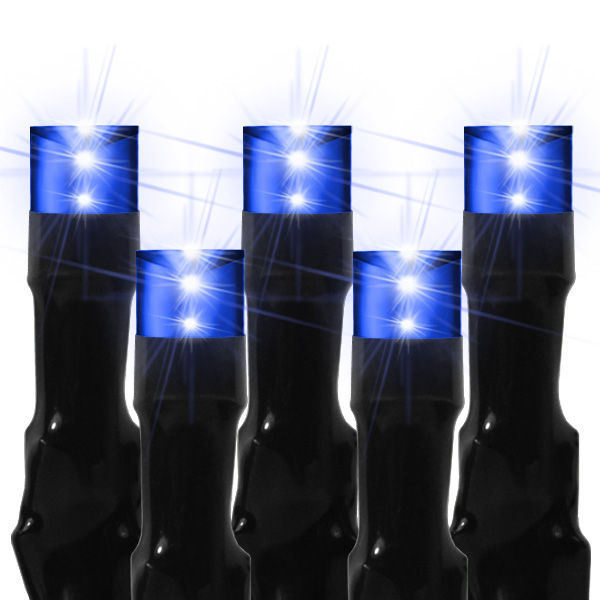 14 ft. Stringer - (240) Bulbs - LED - Blue Wide Angle Crab Lights Image