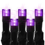 16 ft. Stringer - (80) Bulbs - LED - Purple Wide Angle Lightning Lights Image