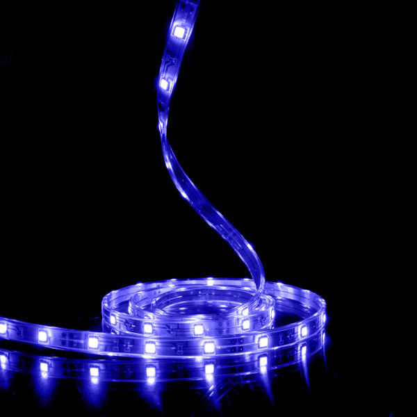 4 in. - Blue - LED - Tape Light - Dimmable - 24 Volt Image