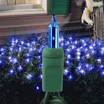 Blue Net Lights - 150 Bulbs - Green Wire Image