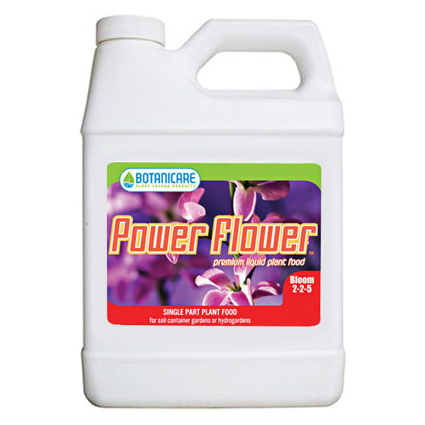 Power Flower - 1 qt. Image