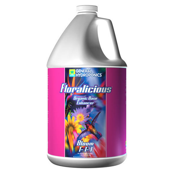Floralicious Bloom - 1 gal. Image