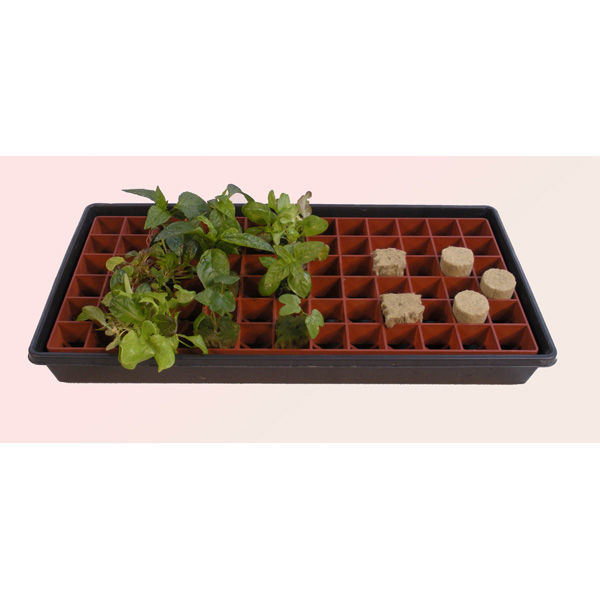 Gro-Smart - Propagation Tray - 78 Cell Image