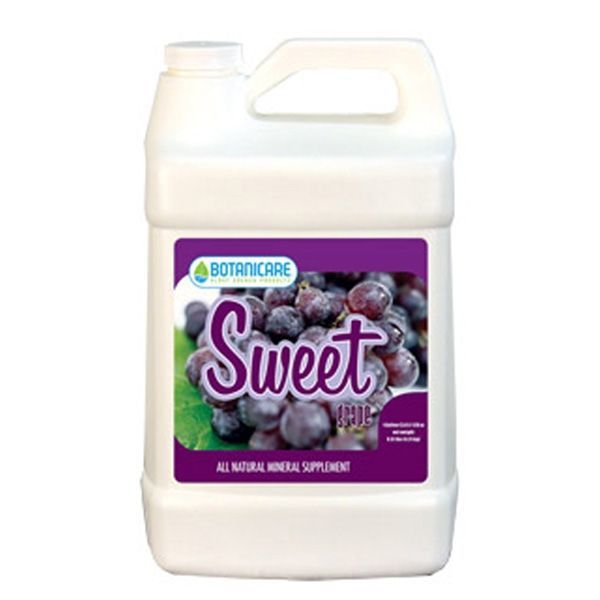 Sweet Grape - 1 qt. Image