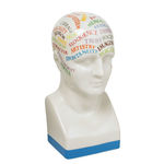 Cool Character - Colorful Phrenology Head Image
