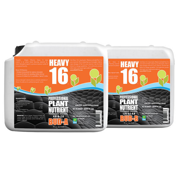 Heavy 16 - Bud-A - 10 Liter Image