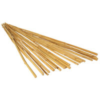 2 ft. - Bamboo Stakes - Natural Finish - Use Indoors or Outdoors - Pack of 25 - Hydrofarm HGBB2