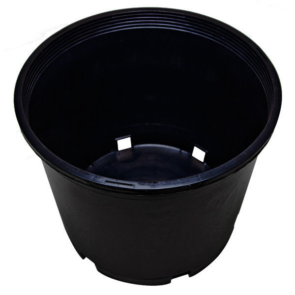 5 Gallon Premium Nursery Pot Image