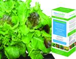 AeroGarden - Salad Greens Kit Image