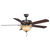 Fanimation BP220OB1 - 52 in. Aire Decor Ceiling Fan