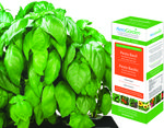 AeroGarden - Pesto Basil Seed Kit Image
