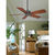Fanimation FP8009OB - 52 in. Cancun Ceiling Fan