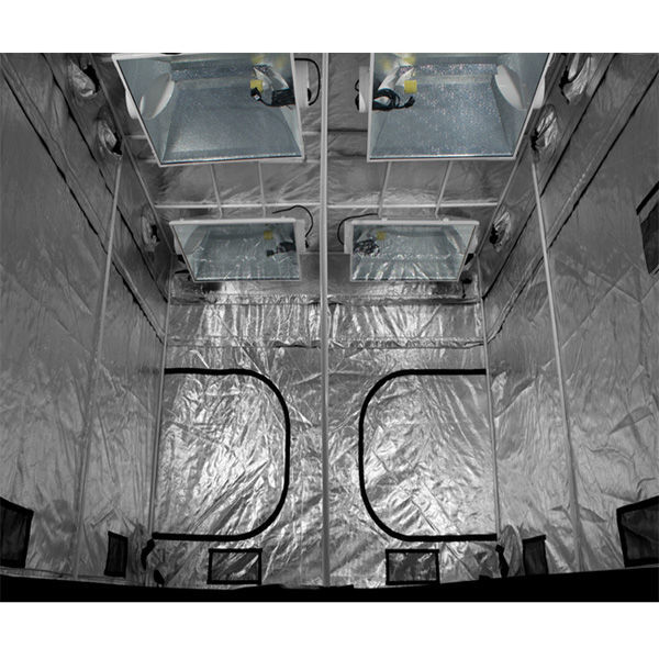 120 x 120 x 83 in. - Gorilla Grow Tent Image