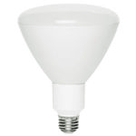 Halco 80134 - LED - 18 Watt - R40 Pool Bulb Image