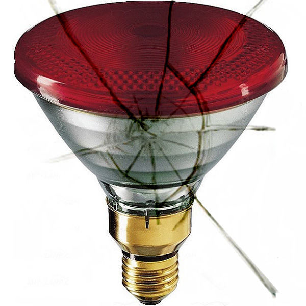 Shatter Resistant - 85 Watt - PAR38 - Flood - Red Image
