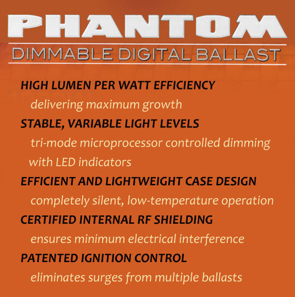 600 Watt - Phantom Digital Ballast Image