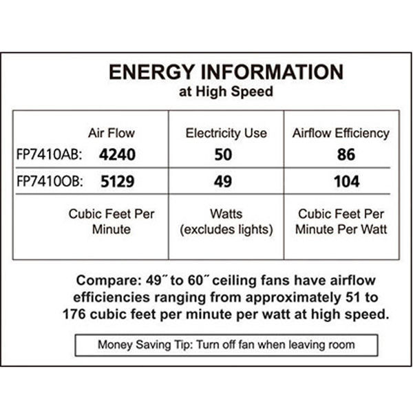Fanimation FP7410AB - 52 in. Windpointe Ceiling Fan Image