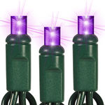 Purple LED String Lights - 25 ft. - Green Wire - 5mm Wide Angle - 50 Bulbs Image