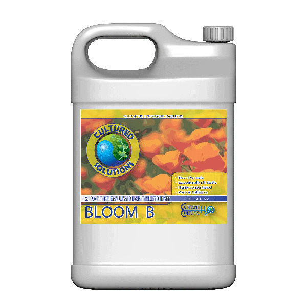 Bloom B - 1 Gallon Image