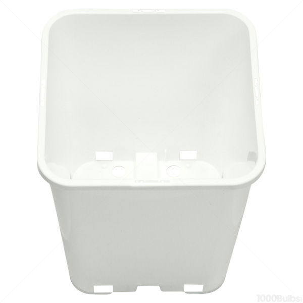 Plastic Planter - 7 in. x 7 in. Square Container Image