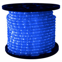 1/2 in. - LED - Blue - Chasing Rope Light - 3 Wire - 120 Volt - 150 ft. Spool - Clear Tubing with Blue LEDs - Signature LED-DLCH-BL
