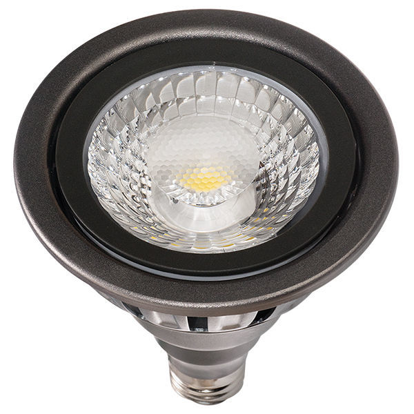 LED - PAR38 - 17 Watt - 1365 Lumens Image