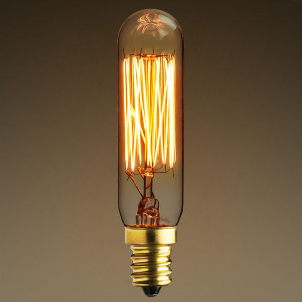25 Watt - Vintage Antique Light Bulb - T6 Tubular Style Image