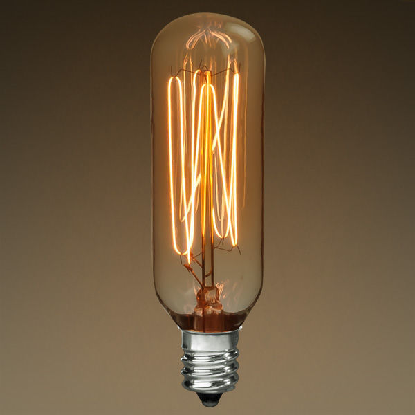 40 Watt - Vintage Antique Light Bulb - T25 Tubular Style Image