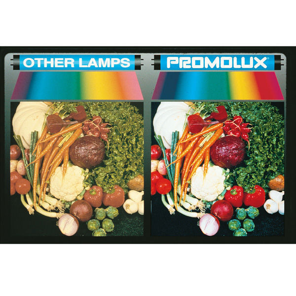 Promolux 12521IND - Produce and Meat Lamp - F21T5 Image
