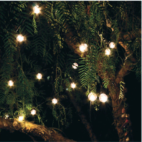 15 ft. - 15 Sockets - 12 in. Spacing - Black Wire - LED Patio Light Stringer Image
