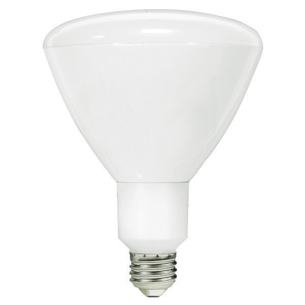 Dimmable LED - 13 Watt - R40 Image