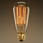 40 Watt - Edison Bulb - 5.4 in. Length Image