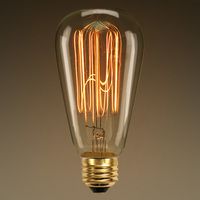 40 Watt - Edison Bulb - 5.4 in Length - Vintage Light Bulb - Squirrel Cage Filament - Amber Tinted