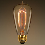 40 Watt - Edison Bulb - 5.38 in. Length Image