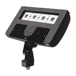 Lithonia DSXF2 LED 4 50K M2 - LED Flood Light Fixture Image